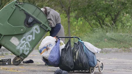бедный : Senior female person dumpster diving on city street