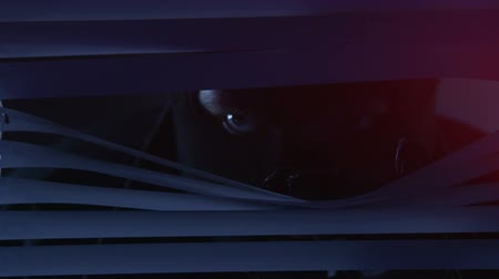 persiana : Man in mask looking through blinds on window illuminated police flashing lights Stock Footage