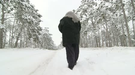caminhada : Lonely senior woman walking along the road through the winter woods in snow Vídeos