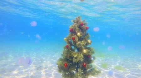 alatt : Festive Christmas tree installed on sand seabed under water sparkling in sunlight surprised jellyfish floating around