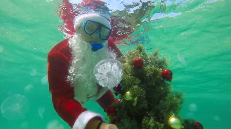 Санта шляпе : Scuba Santa Claus under water installs Christmas tree on seabed