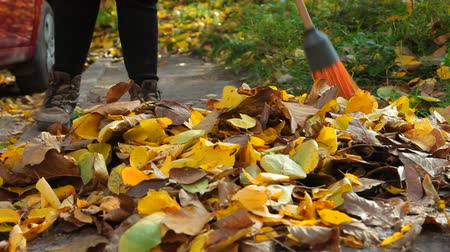 besom : Woman with a broom sweeping heap of fallen yellow leaves on the asphalt walkway in autumn