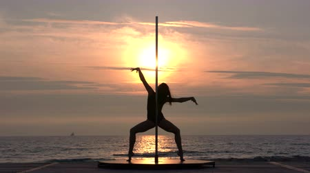 kutuplar : Silhouette of young fit girl doing fitness pole dancing exercise on the beach against the setting sun in the summer evening strong poledancer performing pole tricks and spins