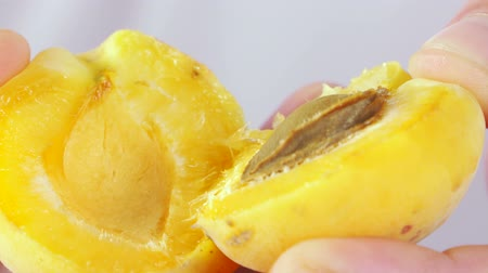 halve : Hands holding two halves of juicy apricot close-up Stock Footage