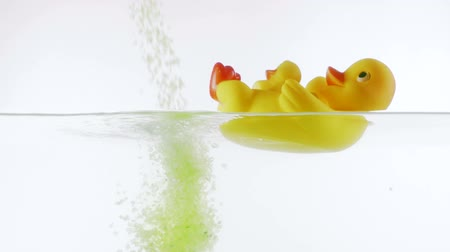 kiskacsa : Slow motion green sea bath salt falling into the water with yellow rubber duck floating in the bathtub on a white background