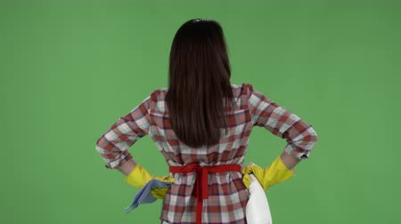 houseclean : Rear view of woman with rag and cleanser spray ready for cleaning against green screen