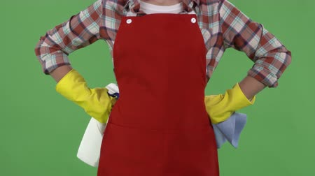 houseclean : Close-up of woman in protective rubber gloves with rag and cleanser spray ready for cleaning against green screen