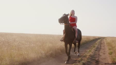 koňmo : Young girl in long scarlet red dress riding black horse on dry grassland. Beautiful female rider with her stallion galloping on dirt road across a field. Horseback riding in slow motion.