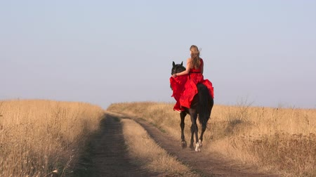 giydirmek : Young girl in long red dress riding black horse on dry grassland. Horsewoman with her stallion trotting cantering galloping across a field in summer evening. Horseback riding in slow motion.