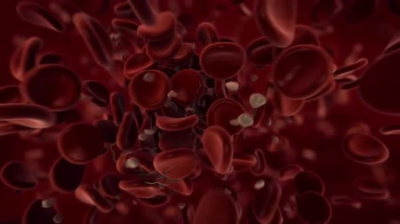 erythrocyte : 3D Render Blood Clot With Fibrin Formation