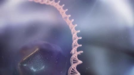propagação : Cancer Cell Division. Tumor Growth and Progression. Abnormal and Uncontrolled Cancer Cells Growth in the Body