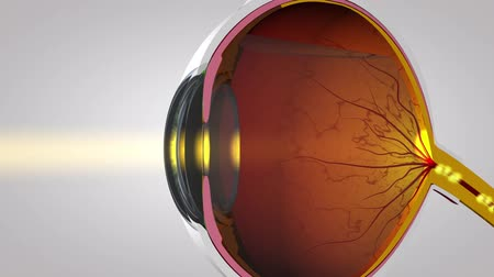 blindness : Signaling Of The Eyes Stock Footage