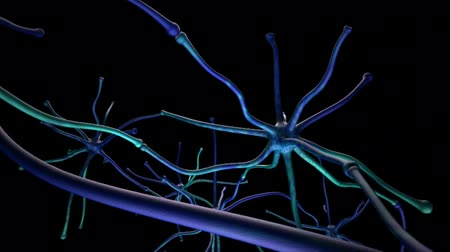 axon : Neural Brain Activity Synapse Network 3D Animation Stock Footage