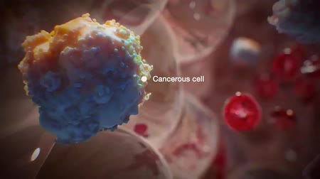 microbiologia : cancer cells into the bloodstream