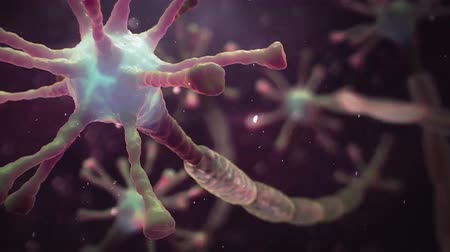 crânio : Disease affecting the brain and spinal cord. 3D Animation of Multiple Sclerosis