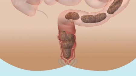 stomache : How the Digestive System Works Stock Footage