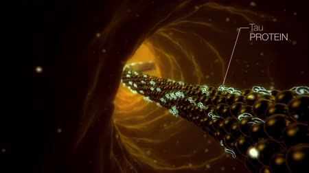 electro : Neurons in action. electrical impulses between neuronal connections Stock Footage