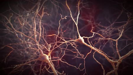 electro : Electrical impulses between neuronal connections Stock Footage