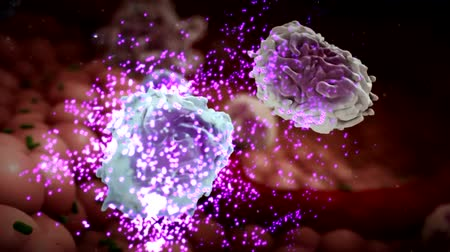 eu : Cell that destroys bacteria. 3D Medical Animation