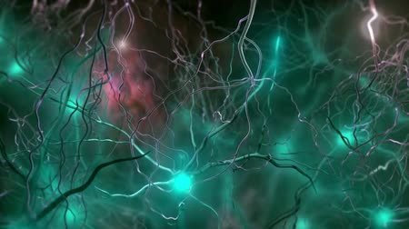 axon : The signal of neurons to each other Stock Footage