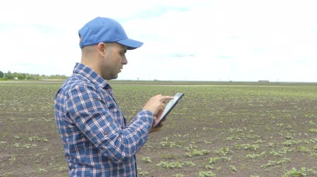 çiftçi : Farmer in a plaid shirt controlled his field and writing notes Stok Video