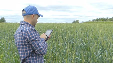 rolnik : Farmer in a plaid shirt controlled his field and looking at tablet