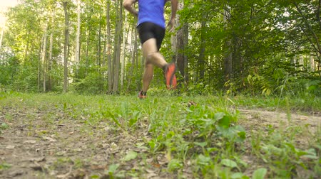 inspiradora : Man running cross country in summer forest. Jogging motivation in green park beautiful inspirational landscape. Stock Footage