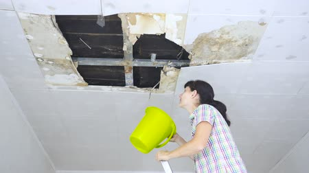 zastřešení : Young Woman Collecting Water In Bucket From Ceiling. Ceiling panels damaged huge hole in roof from rainwater leakage.Water damaged ceiling.