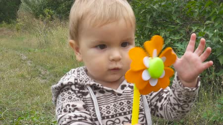 full bucket : Baby boy playing with a toy in his hand in autumn day in park outdoors. Stock Footage