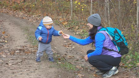 manges : A mother feeds her little child in autumn forest on the trail. Stock Footage