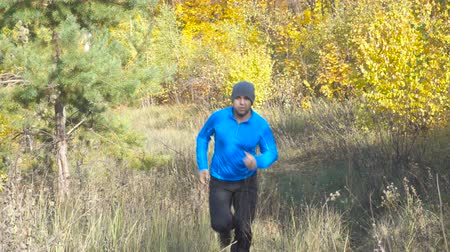 manges : Man cross country running on trail in forest. Training and exercising outdoors when cross country running in inspirational autumn landscape. Sports Motivation. Stock Footage