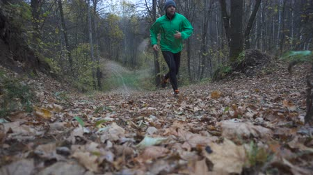 manges : Man jogging cross country running on trail in forest. Training and exercising outdoors when cross country running in inspirational autumn landscape. Sports Motivation. Slow Motion.