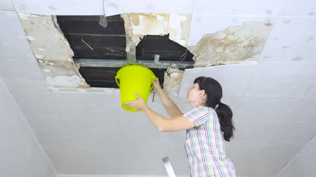 повреждение : Young Woman Collecting Water In Bucket From Ceiling. Ceiling panels damaged huge hole in roof from rainwater leakage.Water damaged ceiling.