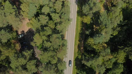 asphalt road : Aerial view of white car driving on country road in forest. Aerial view of a beautiful wildlife. Flying on a drone in wild along road. Transport traffic on forest road. Aerial Flight over trees. Stock Footage
