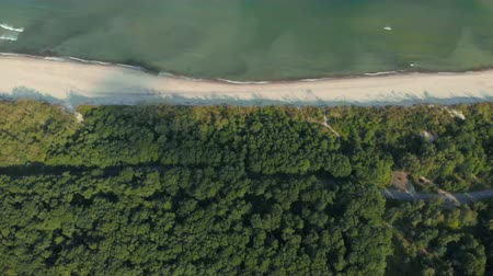 baltık denizi : Video from above, aerial view of a beautiful Wild Island. Aerial view. 4K UHD. Flying on a drone in wild along coast. Epic view. Aerial top view of summer green trees in forest. Seascape at sea coast