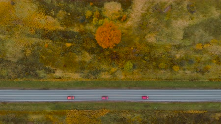 経路 : View From Above. Aerial View Flying Fall Nature Road Running Through Countryside. Road in Autumn Scenery Aerial Shot. Three Red Cars Driving on Road Leading Through Colorful Landscape on Autumn Day