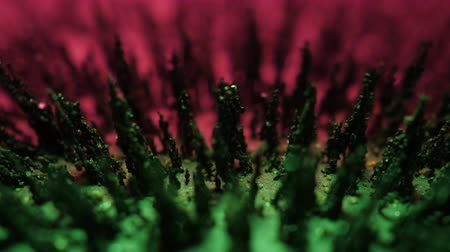 Chaotic Motion Iron Powder Under Influence Of Magnetic Field. Macro Abstract Background. Close up Dance Of Metal Particles Under Influence Of Magnet in Neon Light. Energy Gravity Field.