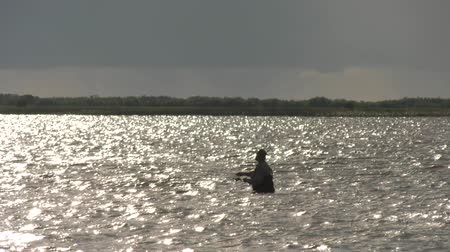 fisher : A fisherman is fishing in the water