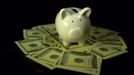 porcelán : A white piggy bank and dollar bills revolve against a black background, saving and accumulating money.