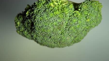 brokkoli : The head of uncooked broccoli rotate. Closeup view shot fresh juicy vegetables with seamless looping.