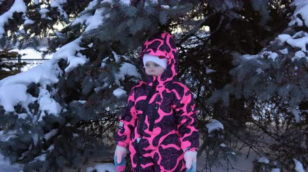 new clothes : Portrait of a happy child in a pink overalls next to a blue fir in the woods on a winter day. Stock Footage