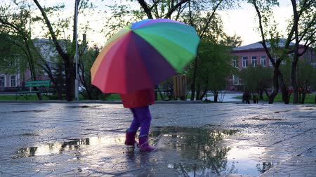 gumboots : A cute little girl with a colorful umbrella is jumping and dancing in the puddles in the park at sunset. Stock Footage