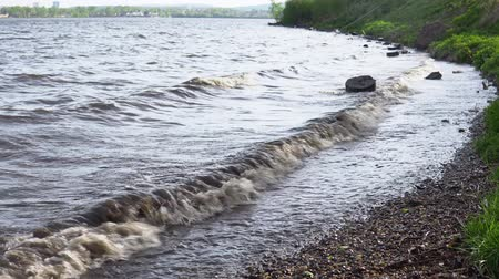 driftwood : Large waves are washed by dark stumps on the shore of the reservoir. Plastic debris and branches swim near. Stock Footage