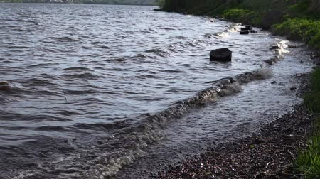 snag : Large waves are washed by dark stumps on the shore of the reservoir. Plastic debris and branches swim near, slow-motion shooting. Stock Footage