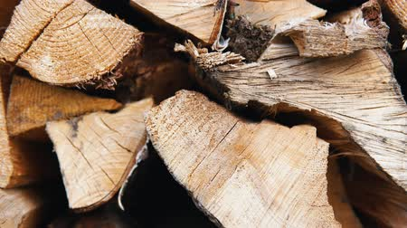 견목 : The chopped and sawn trunks of trees is stacked in a large log woodpile in the yard. Stacked firewood prepared for the fireplace and stove, dolly shot. 무비클립