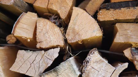 кора : The chopped and sawn trunks of trees is stacked in a large log woodpile in the yard. Stacked firewood prepared for the fireplace and stove, dolly shot. Стоковые видеозаписи