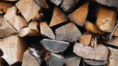 obnovitelný : The chopped and sawn trunks of trees is stacked in a large log woodpile in the yard. Stacked firewood prepared for the fireplace and stove, dolly shot. Dostupné videozáznamy