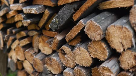 견목 : The chopped and sawn old trunks of trees is stacked in a large log woodpile in the yard. Stacked firewood prepared for the fireplace and stove, dolly shot.