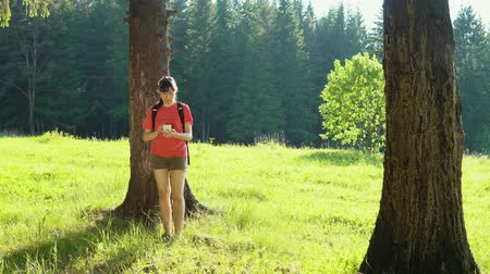 ориентация : A young woman in a red T-shirt and shorts with a backpack walks through the forest on a summer day. The girl checks the direction of movement using the navigator in the smartphone. Стоковые видеозаписи