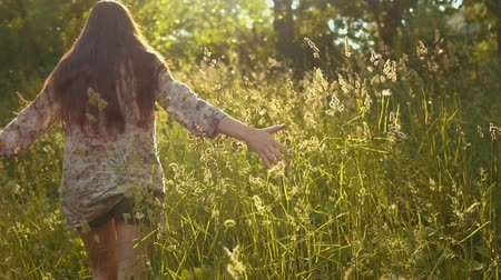 chmýří : A young woman with dark long hair is walking along a meadow. A womans hand touches the high stems of the grass, fluffy seeds float in the golden rays of the sun, slow motion.